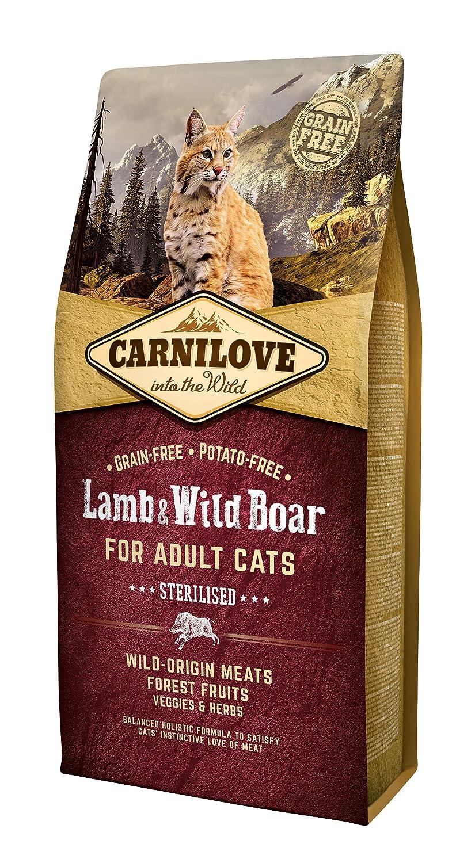 CARNILOVE 512300 alimento seco para Gatos Wild Boar, Cordero 6 kg - Alimentos Secos para Gatos (Wild Boar, Cordero, 6 kg, Cualquier Raza)