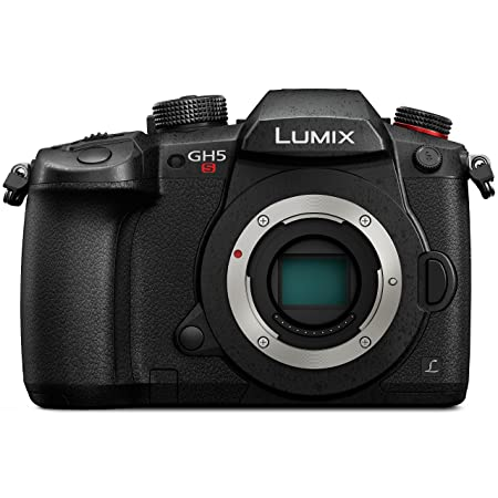 Review PANASONIC LUMIX GH5s Body