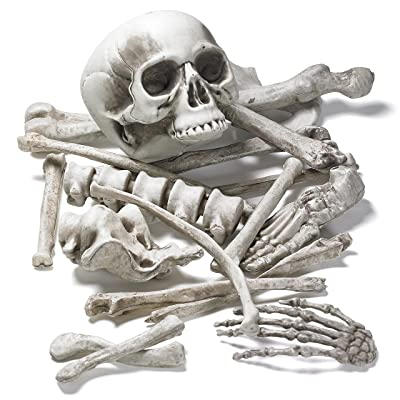 Prextex Bag of Skeleton Bones and Skull for Best Halloween Decoration and Spookiest Graveyard Scene: Toys & Games