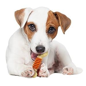 Nylabone PRO Action dog Bone Dental Chew Toy, Small