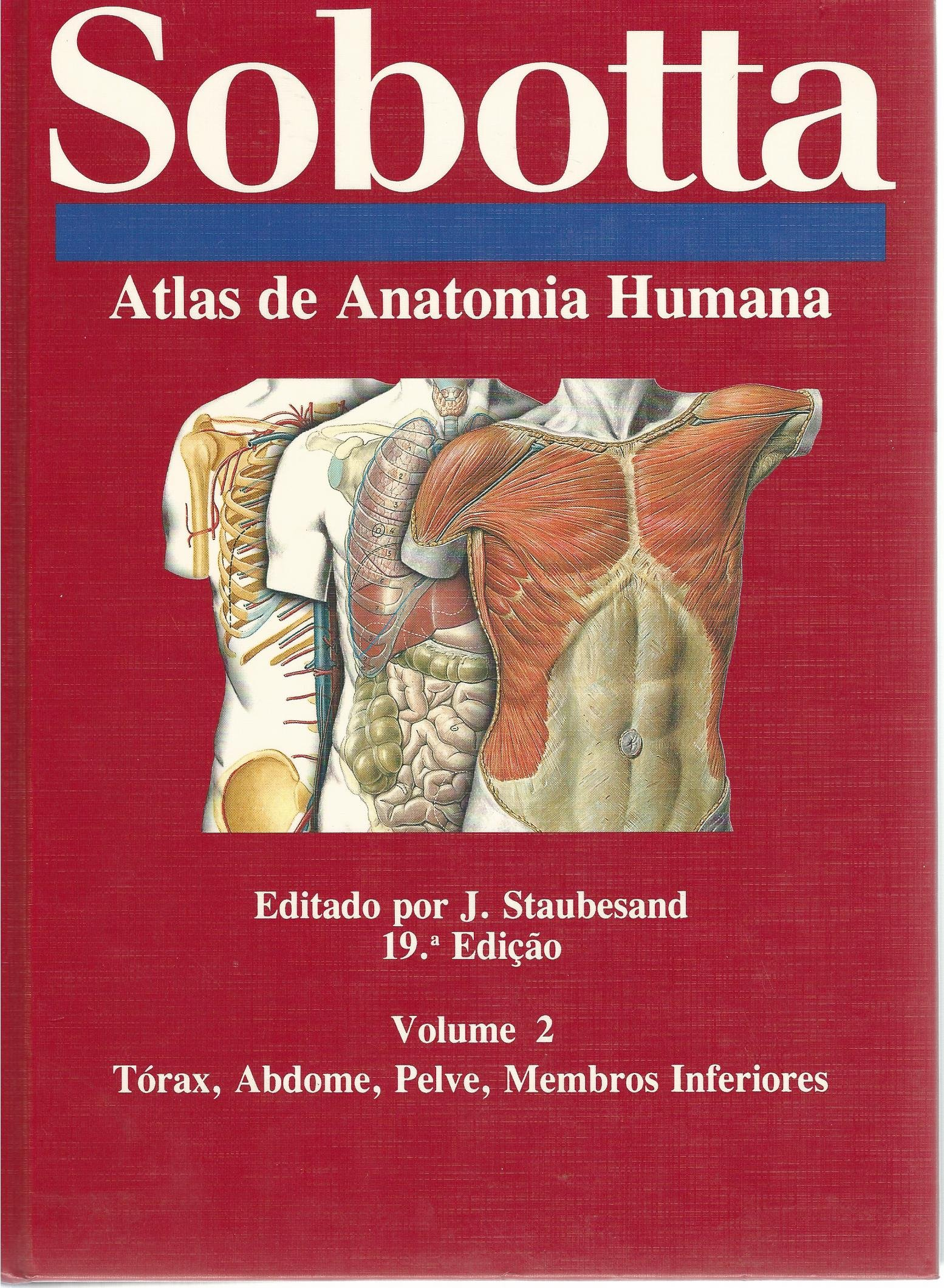 Atlas De Anatomia Humana, Volume 2, Torax, Abdome, Pelve, Membros ...