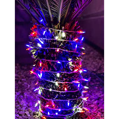 Super Bright Home Decorative String Patriotic LED Christmas Lights Set - Red White and Blue - 100-Piece - 27 ft Lighted Length, Connect up to 30 Sets - Indoor / Outdoor Holiday Mini Pack : Garden & Outdoor