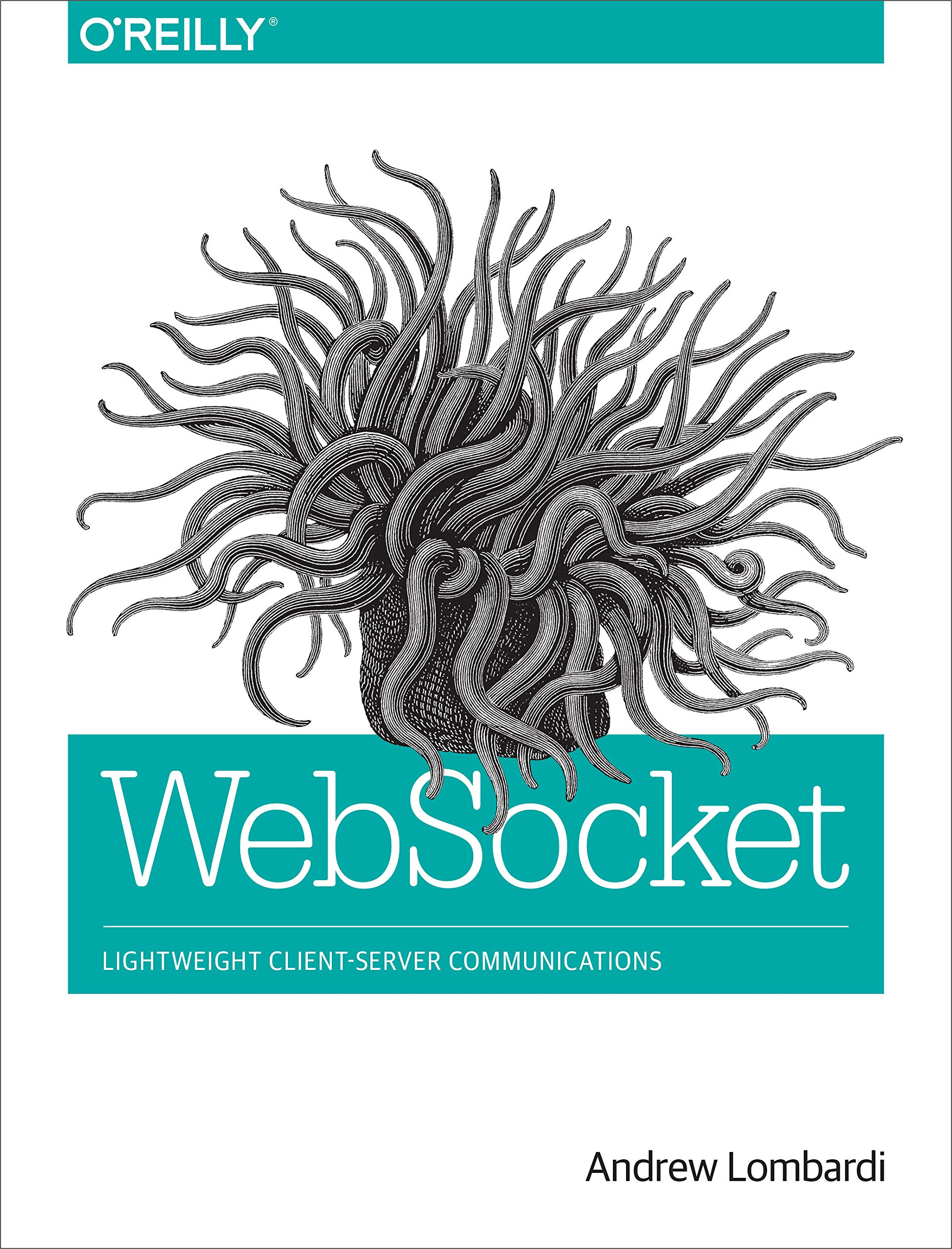 WebSocket: Lightweight Client-Server Communications por Andrew Lombardi