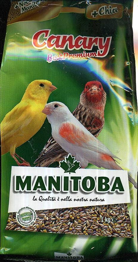 MANITOBA la alimentación de aves canary- kg 1 - Comida de ...