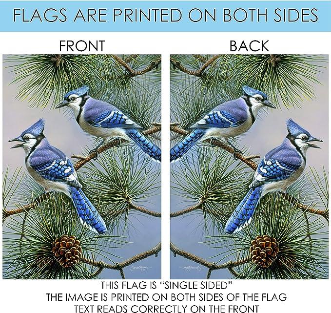 Toland Home Garden Blue Jay Duet 28 X 40 Inch Decorative Fall Winter Bird Pine Tree House Flag 1010433 Garden Outdoor