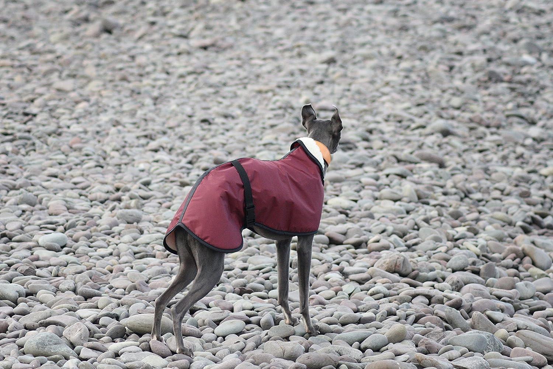 Capa impermeable para perro con forro de lana, de 4 colores, 5 tallas y con correa de cierre ajustable para whippet/galgo inglés/lurcher/galgo ...