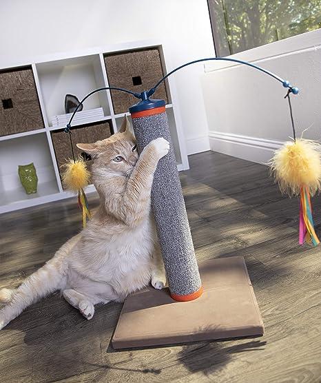 Amazon.com : SmartyKat Scratch N Spin Carpet Scratching Post Cat Scratcher : Pet Supplies