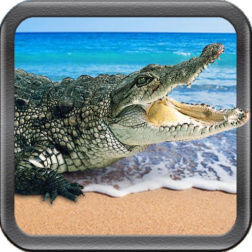 (Crocodile Swamp Attack - Wild)