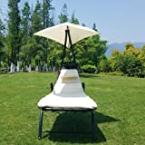 Victoria Young Chaise Lounges Hammock Chair Patio
