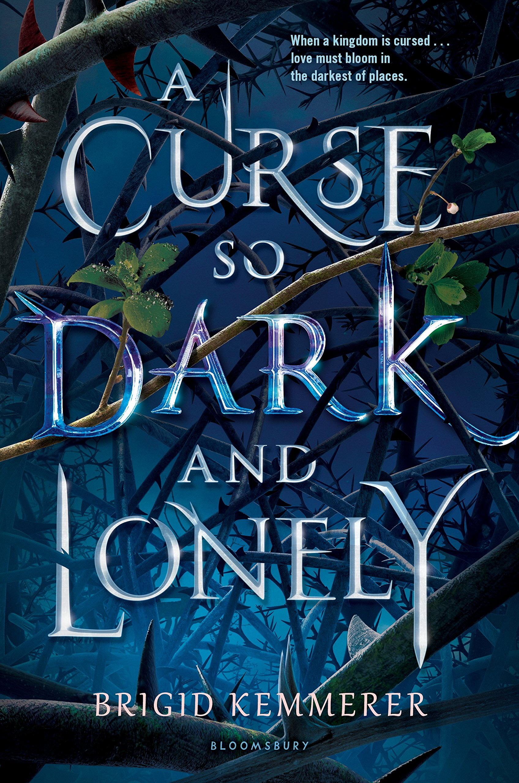 Image result for a curse so dark and lonely book