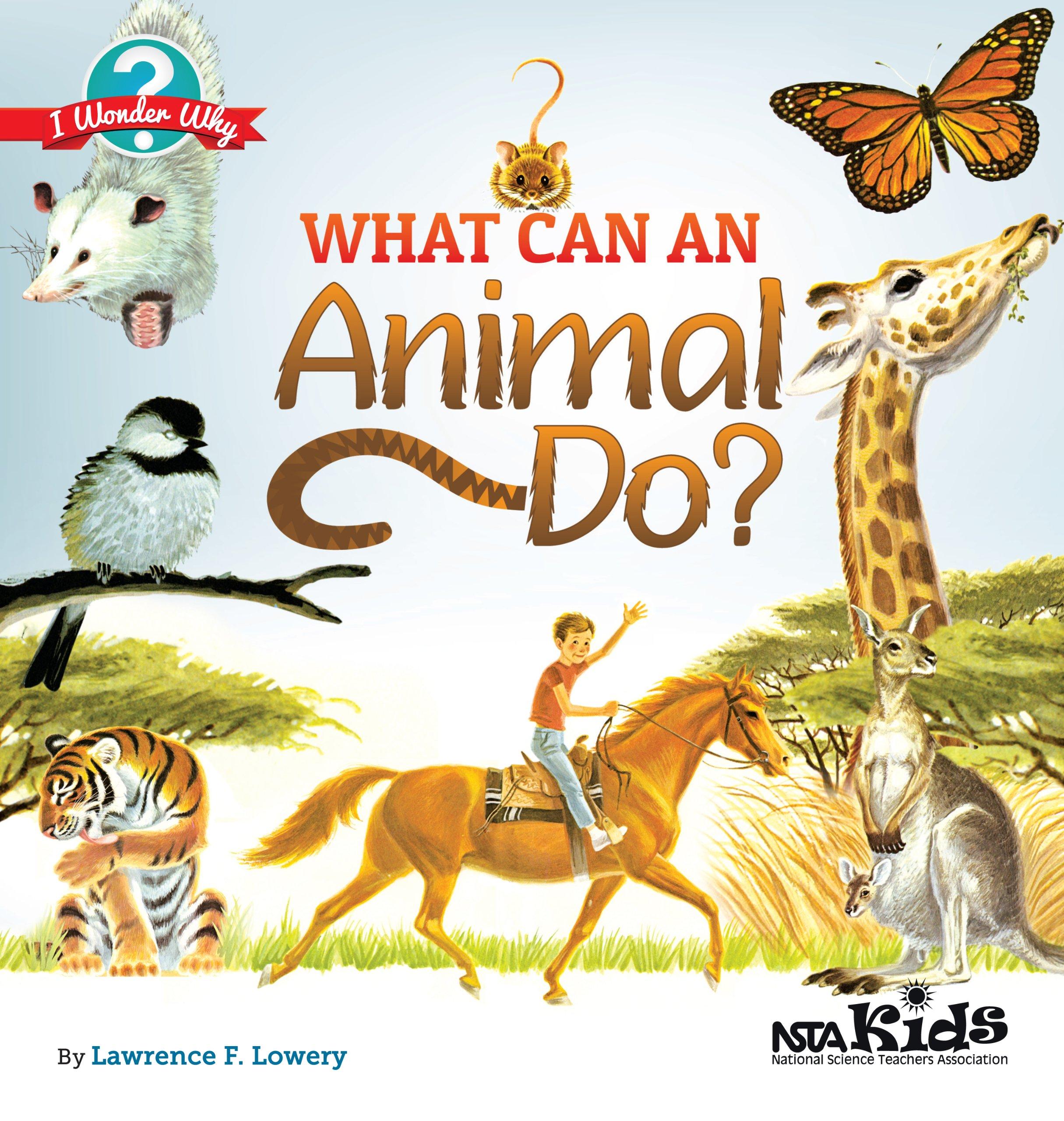 Read Online What Can an Animal Do? (I Wonder Why) pdf epub