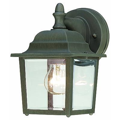 Thomas Lighting SL942263 Hawthorne Outdoor Wall Lantern, Painted Bronze - Wall Sconces - .com