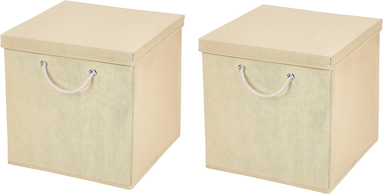 Caja de almacenaje, 30 x 30 x 30 cm, con tapa, beige, 2 unidades: Amazon.es: Hogar