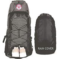 POLESTAR Flyer 55 ltrs Grey Rucksack for Hiking Trekking/Travel Backpack