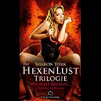 Die HexenLust Trilogie  - Wie alles begann | Erotischer Roman: Die Hexen beschützen die Menschheit vor Vampiren, Dämonen & Magiern ...