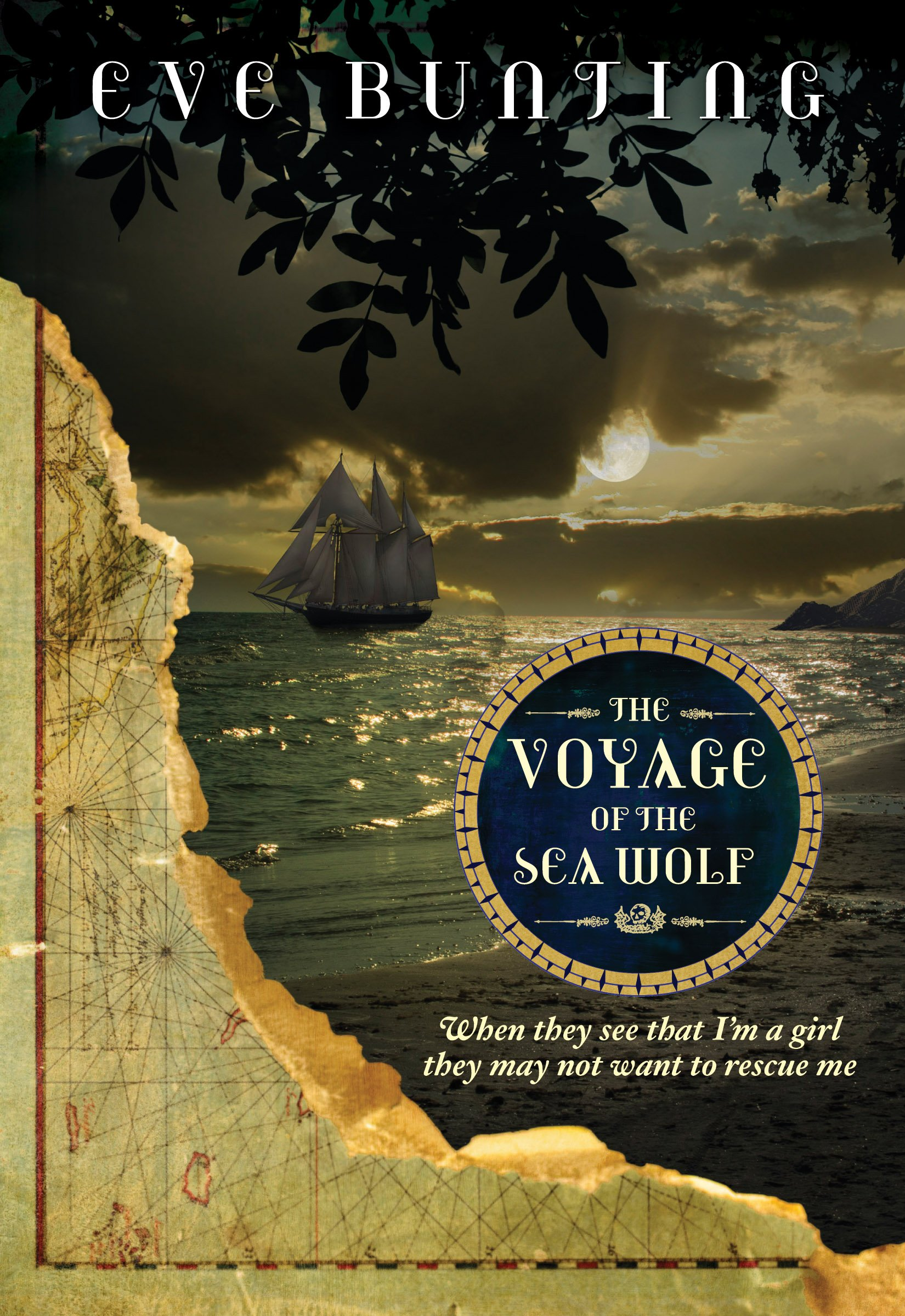 Download The Voyage of the Sea Wolf (Eve Bunting's Pirate Series) pdf