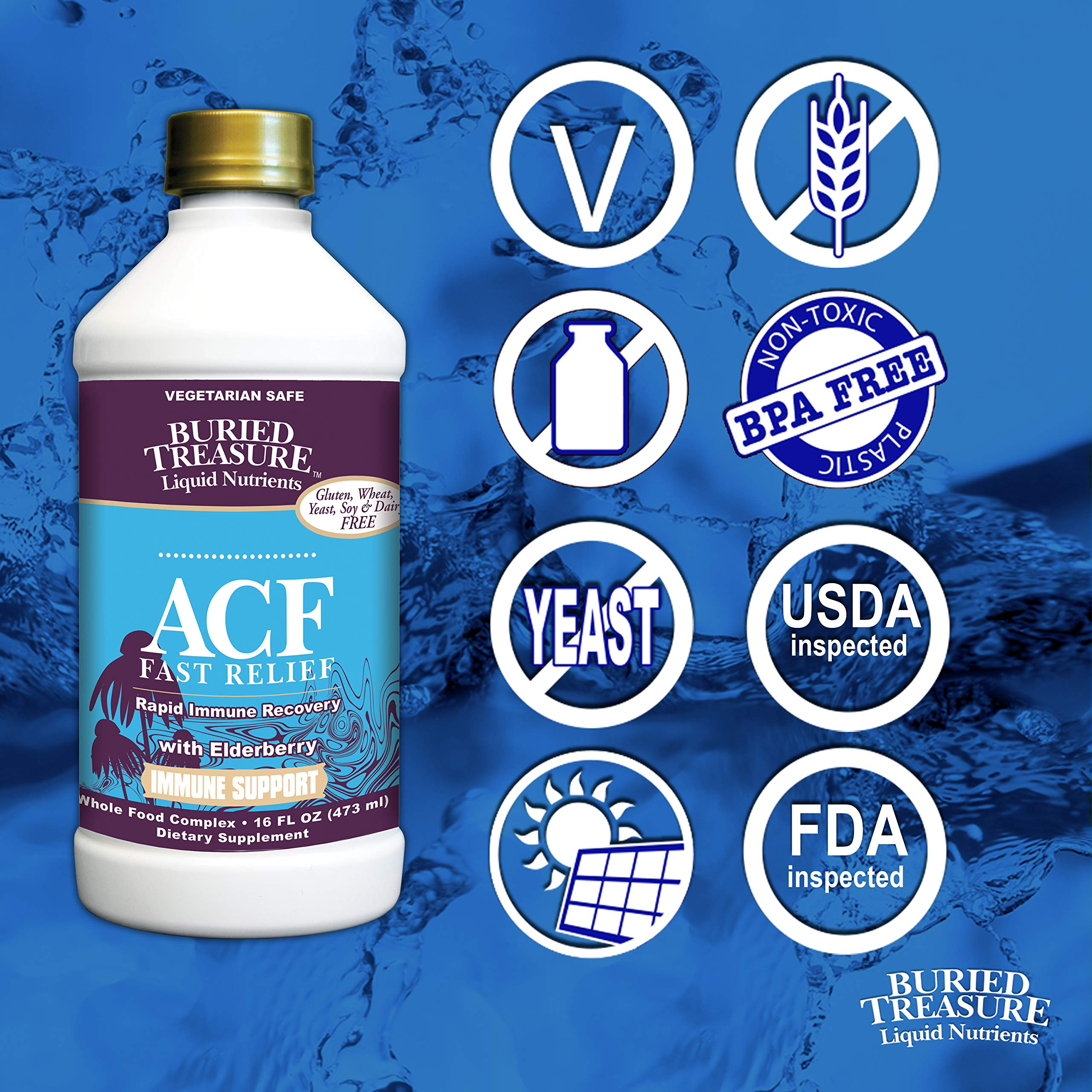 Buried Treasure ACF Fast Relief Rapid Immune Recovery with 1,000 mg Vitamin C, Elderberry, Echinacea and Herbal Blend for Complete Immune Support Dietary Supplement, 16 oz by Buried Treasure