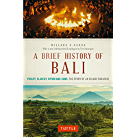 A Brief History Of Bali: Piracy, Slavery, Opium and Guns: The Story of a Pacific Paradise