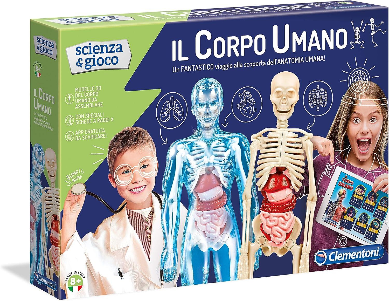 Juguete de anatomía