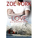 Love in a Snowstorm (Pine Harbour Book 2)
