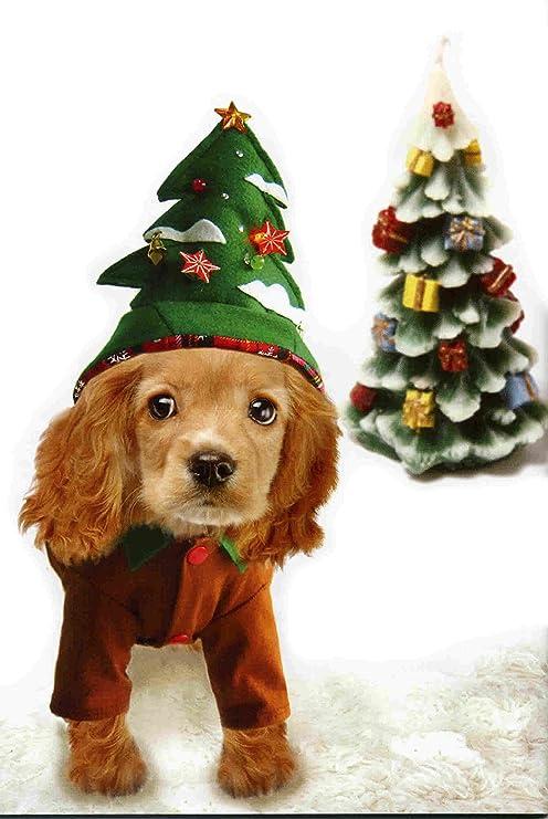 Immagini Natalizie Con Cani.Christmas Fancy Dress Costumi Per Cani Albero Di Natale Con