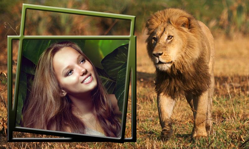 lion photo frames appstore for android. Black Bedroom Furniture Sets. Home Design Ideas