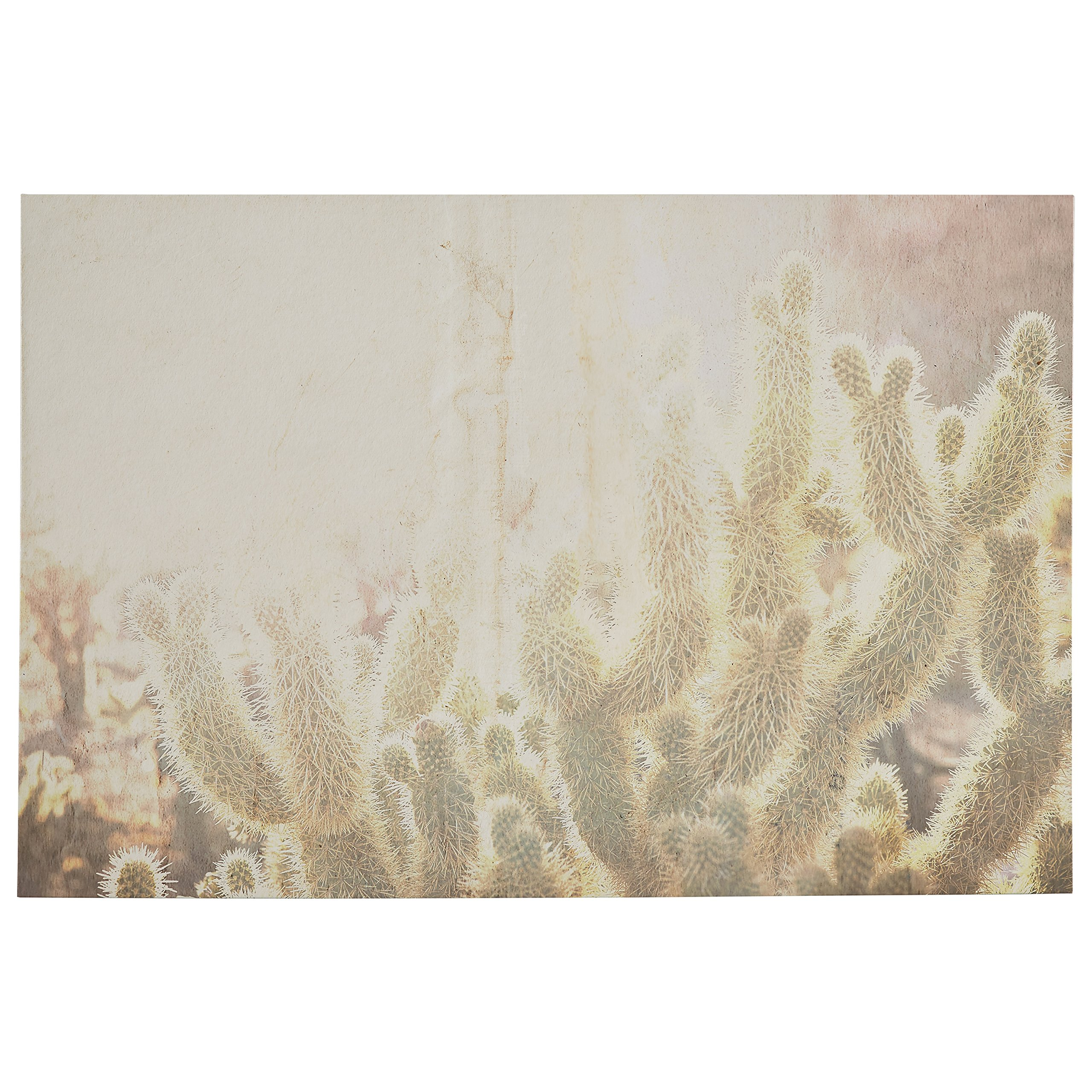 Sun Exposed Cactus Canvas Photo Print 60'' x 40'' by Rivet