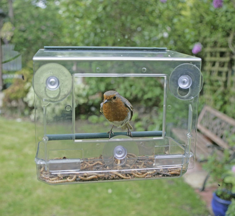iron choice bird birds thru chirper selection backyard wrought fly cedar blue platform feeder feeders