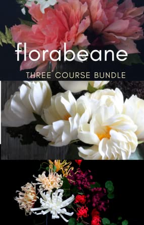 Amazon florabeane diy paper flowers three flower course bundle florabeane diy paper flowers three flower course bundle online video courses online mightylinksfo