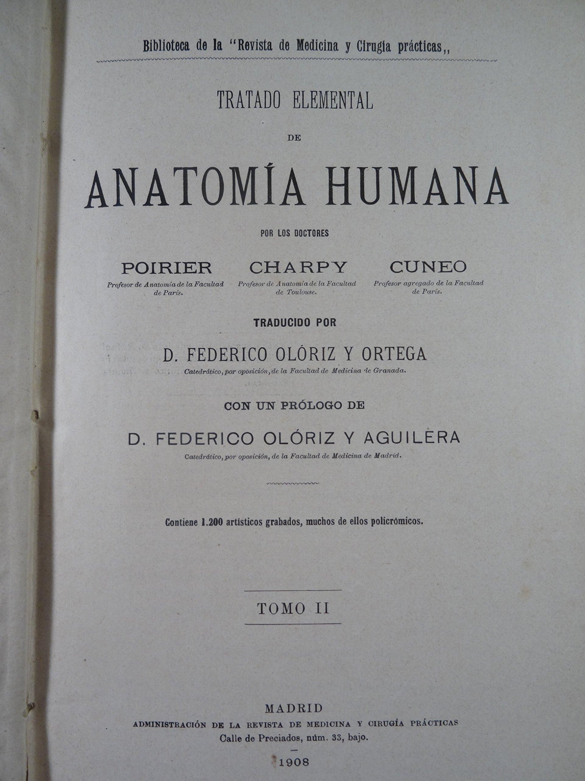 Tratado elemental de Anatomía Humana: Amazon.es: Charpy, Cuneo ...