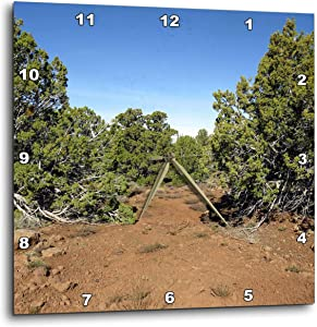 3dRose Jos Fauxtographee- Dirt Road - Greenery Off a Backroad in Southern Utah with red Dirt - 10x10 Wall Clock (DPP_323741_1)