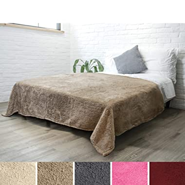 PAVILIA Luxury Sherpa Twin Size Bed Blanket | Fluffy, Plush, Large Throw for Couch, Sofa | Soft, Lightweight, Microfiber | Solid Taupe Brown Bedding Blanket | 60 x 80 Inches