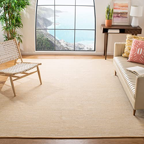 Safavieh Montauk Collection MTK250D Flat Weave Cotton Area Rug