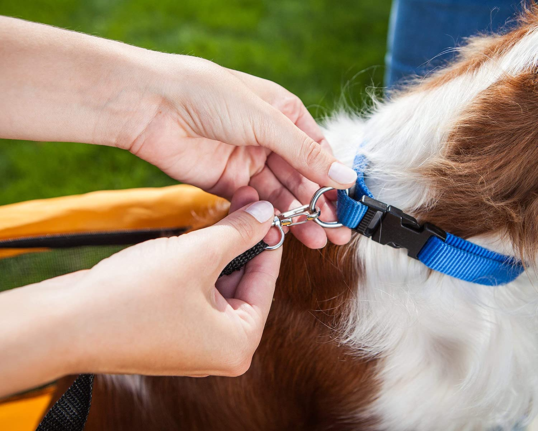 Schwinn Rascal Pet Trailer Renewed