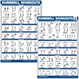 QuickFit 2 Pack Dumbbell Workout Exercise Posters - Volume 1 & 2 - Free Weight Body Building Exercise Charts - 18' x 27…