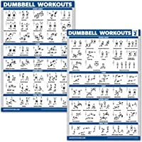 """QuickFit 2 Pack Dumbbell Workout Exercise Posters - Volume 1 & 2 - Free Weight Body Building Exercise Charts - 18"""" x 27"""" - Vol. 1 & 2"""