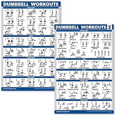QuickFit 2 Pack Dumbbell Workout Exercise Posters