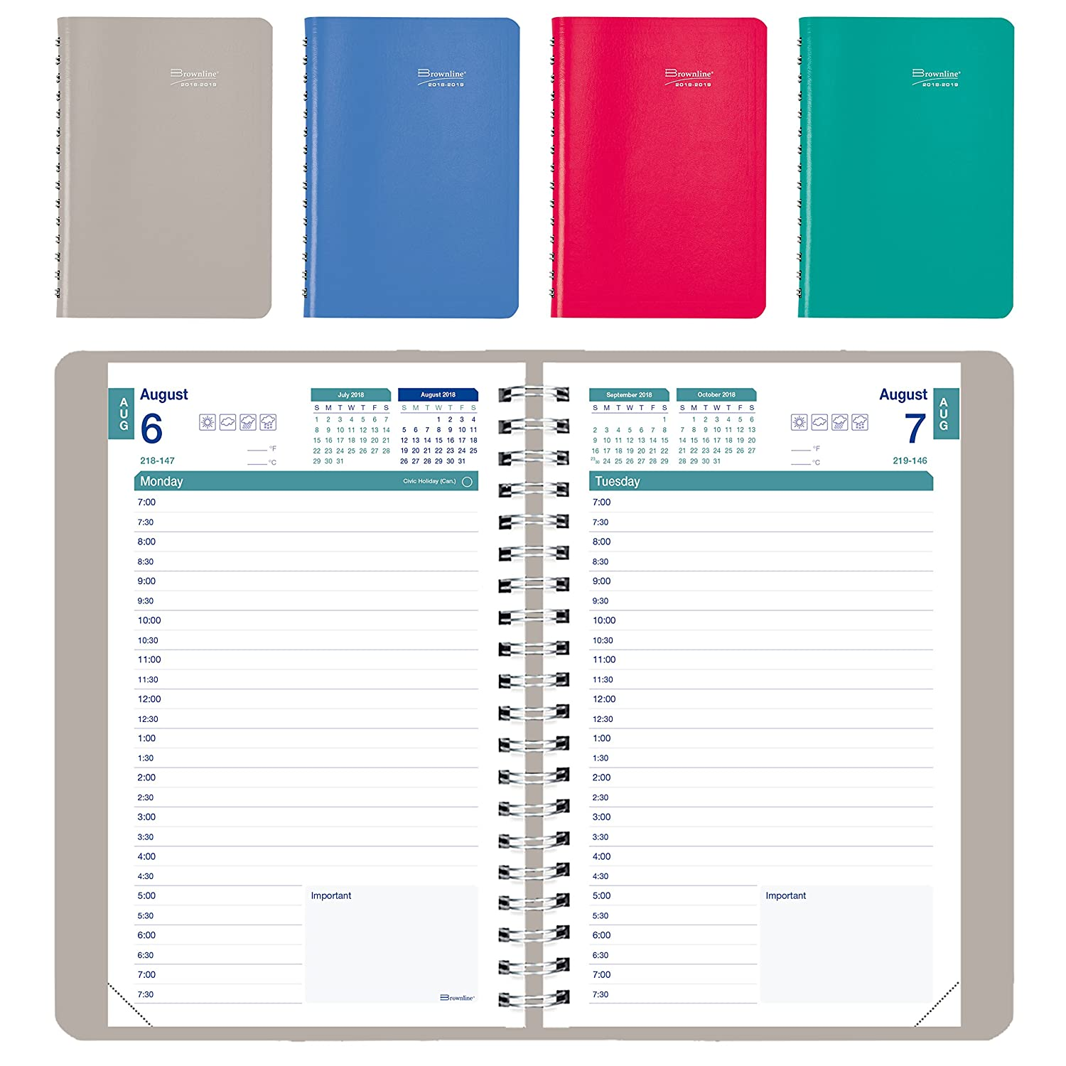 Brownline 2018-2019 Daily Appointment Book/Academic Daily Planner, 8x5, August 2018 - July 2019, Assorted Colours, English (CA201.FASX-2019) 8x5 Blueline Canada CA201.FASX-19