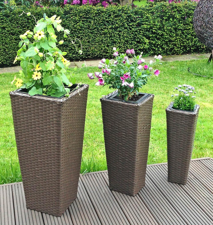 Bambus Im Kbel Als Sichtschutz Simple Bambus Garten Im Hause