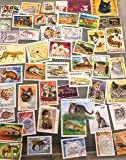 50 Cats and Felines postage