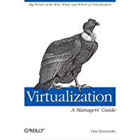 Virtualization: A Manager's Guide: Big Picture of the Who, What, and Where of Virtualization