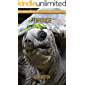 Tortoise: Amazing Pictures & Fun Facts on Animals in Nature