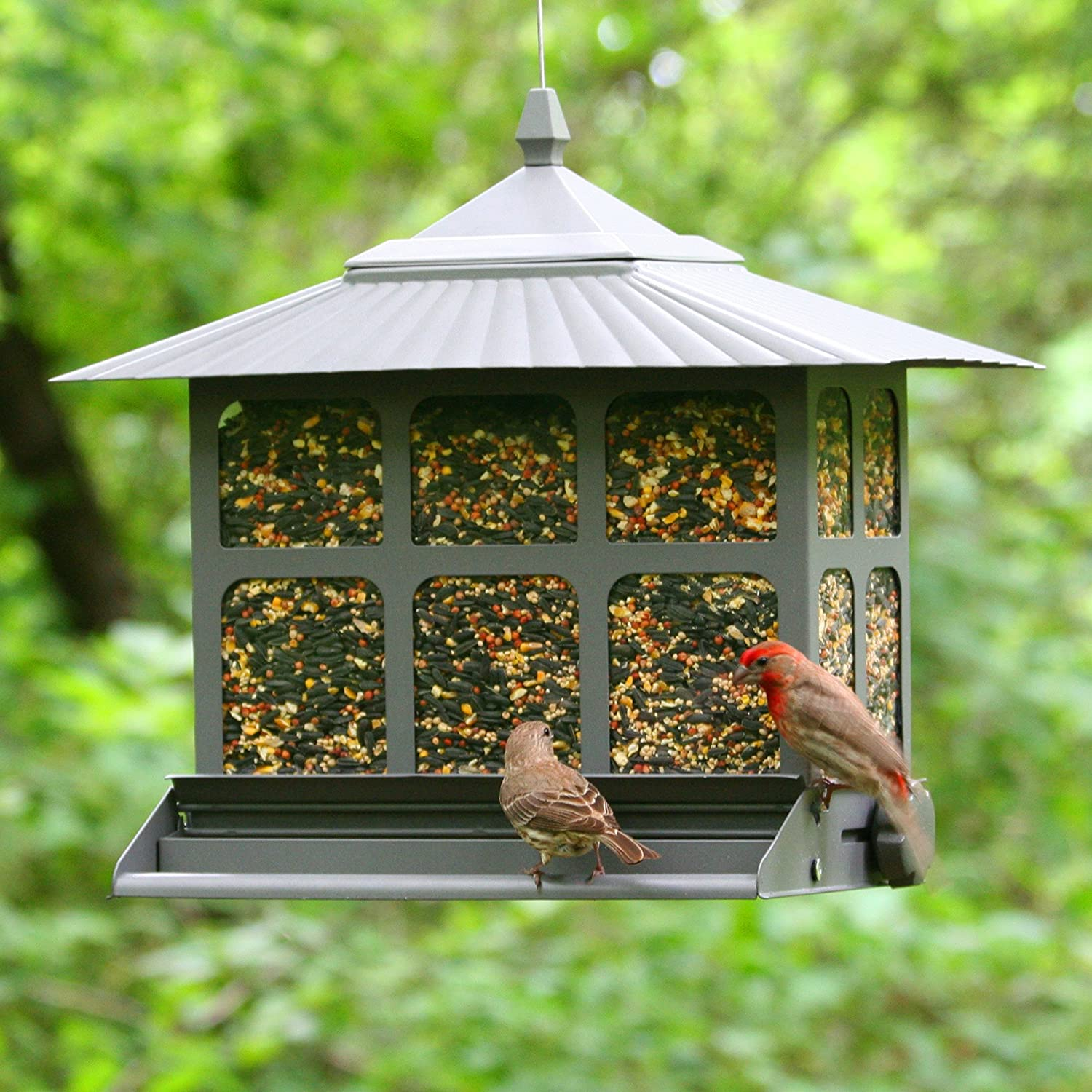 outdoor wild feeder supply to pawhut hanging pet how squirrel proof seed supplies bird garden
