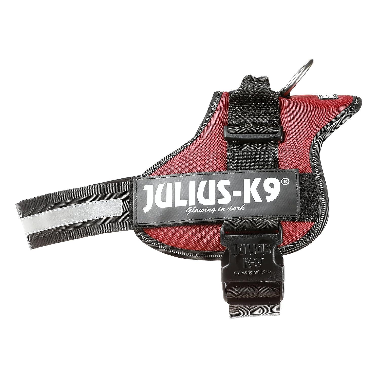 Julius-K9, 162AM-2, K9-Powergeschirr, Größe: 2, Aquamarine Trixie Pets-PTD-1616