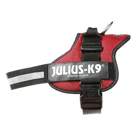 Julius-K9 162BR-2 Power Harness, Tamaño 2, Borgoña: Amazon.es ...