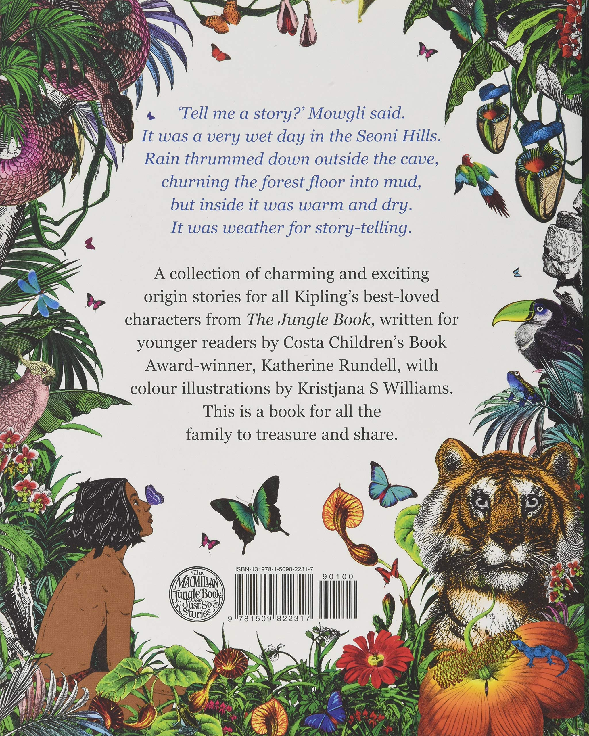 A description of the synopsis of the book the jungle