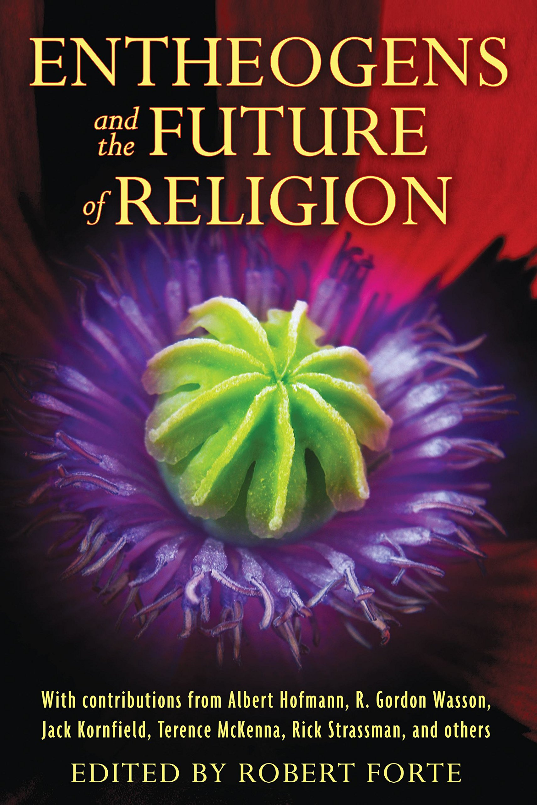Entheogens and the Future of Religion: Amazon co uk: Robert Forte