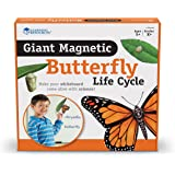 Learning Resources Butterfly Life Cycle