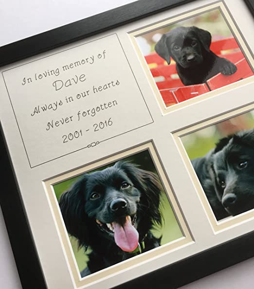 In Loving Memory Pet Memorial Personalised Photo Frame, Black 12 x ...
