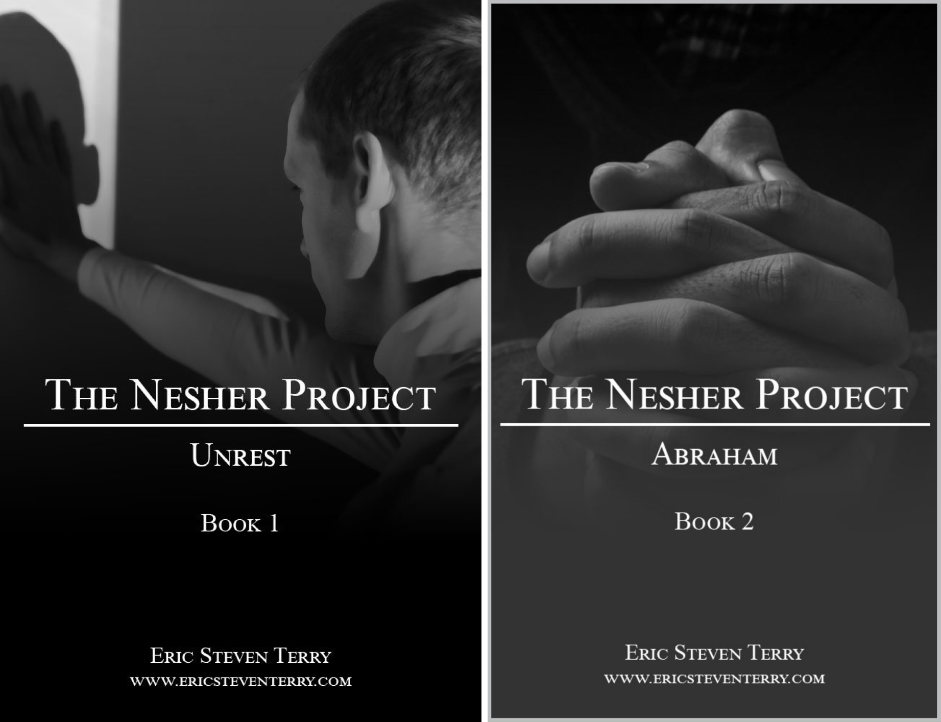 The Nesher Project (2 Book Series)